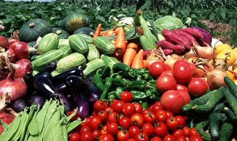 山西將建50個出口食品農産品質量安全示范區