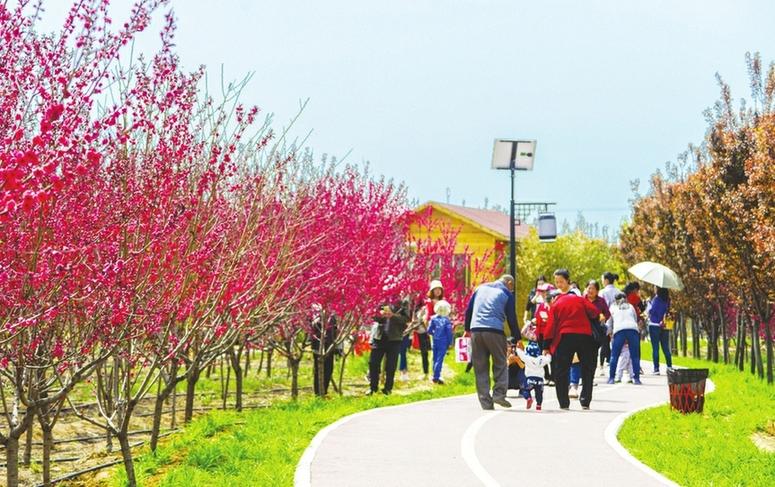 浮山舉辦印象田園鄉村文化旅遊節