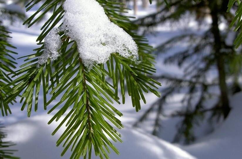 冬季保健不要陷入這些誤區