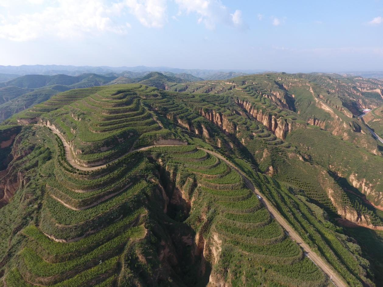 山西现在森林覆盖率只有20.5%,目前还属于生态脆弱区。