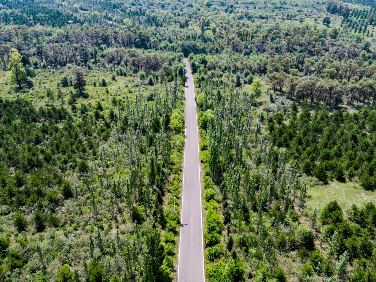 利用八年的时间,每年按人工造林300万亩加封山育林共400万亩以上的标准,在2025年达到26%以上的森林覆盖率。