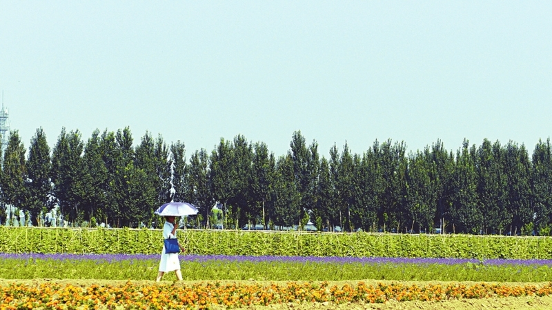 太原王吳村打造鄉村旅遊新模式