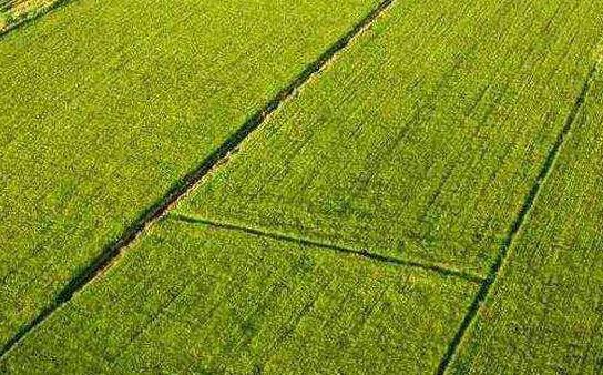 山西25.58億元補助農田建設
