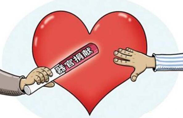 大同遺體器官捐獻志願登記人數已達1069人 在山西位居前列