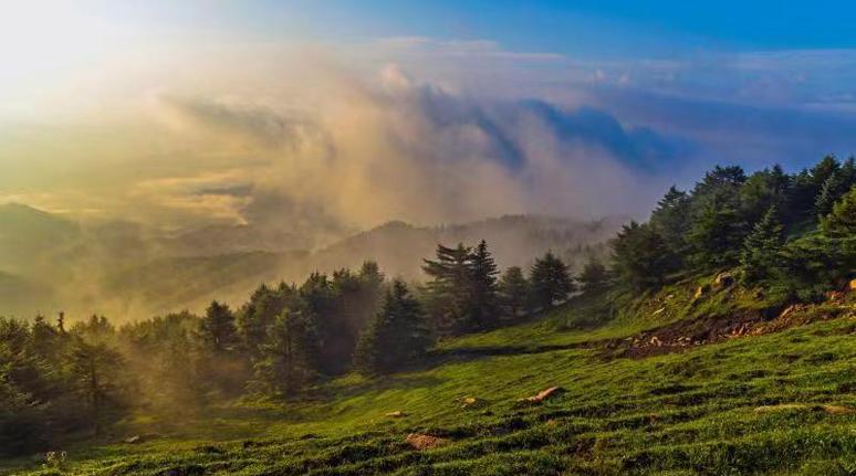 有一種美,叫初秋的雲頂山