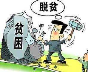 """山西交口:""""呂糧山豬""""産業打造脫貧新路徑"""
