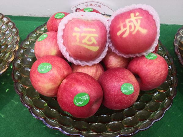 第四屆山西(運城)國際果品交易博覽會開幕