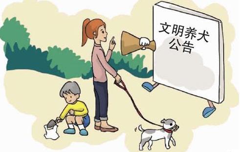 為期8個月 太原市集中整治違規養犬行為