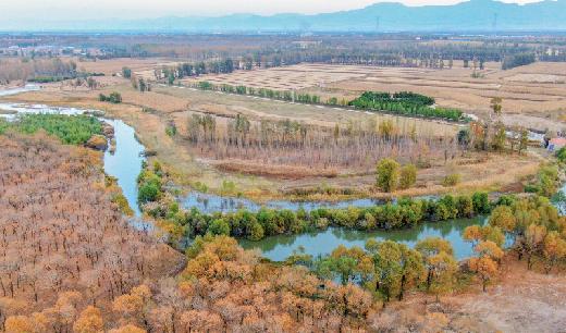 桑幹河畔秋意濃