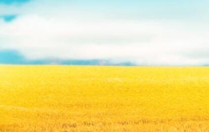 農行山西分行:全力支持實體經濟穩健發展