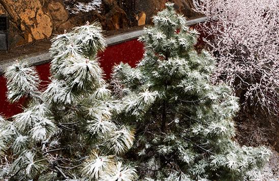 11月29日-30日,山西將迎大范圍雨雪天氣