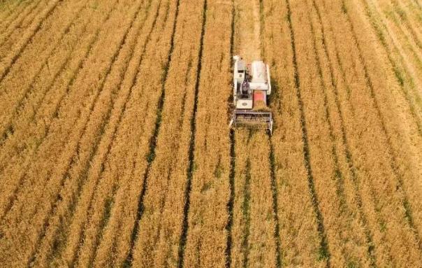 首批國家農業高新技術産業示范區落地晉中