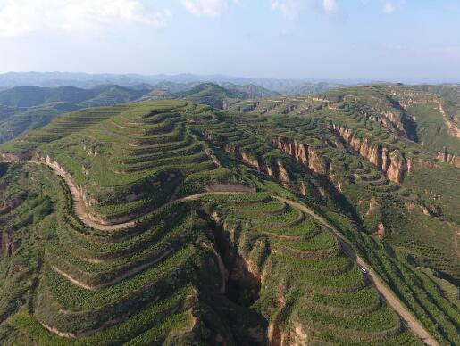 2020年,山西將完成營造林400萬畝