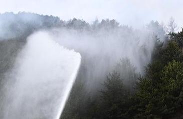 這有一份森林防火和逃生自救建議,請查收!