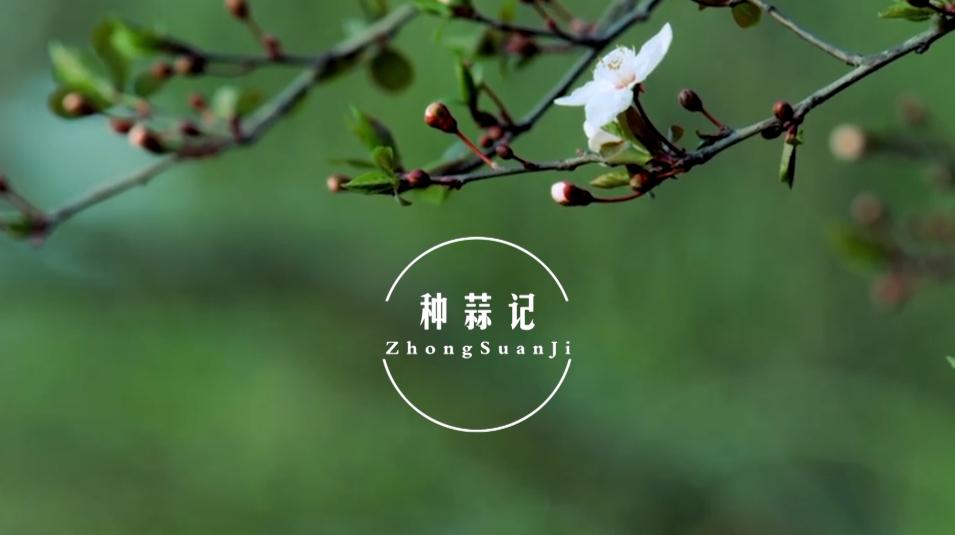 【希望】種蒜記