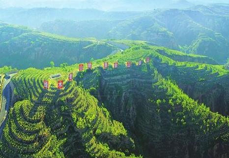 """山西:林業生態扶貧為貧困戶打造""""綠色銀行"""""""