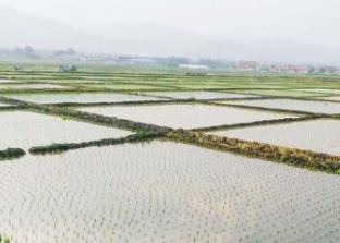 太原市晉源區增強農村電網保障能力