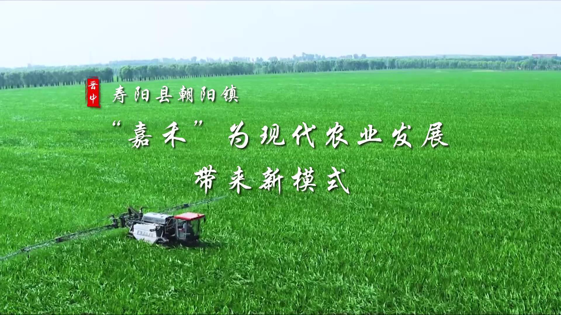 """【見證新晉中】""""嘉禾""""為現代農業發展帶來新模式"""