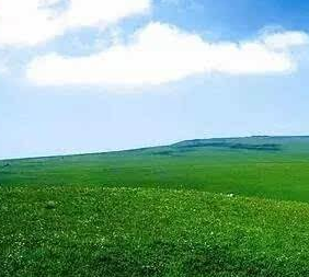 山西省出臺《山西省草原生態保護修復治理工作導則》