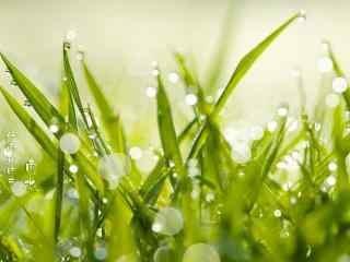 連日出現大范圍降水 山西全力做好強降雨防范工作