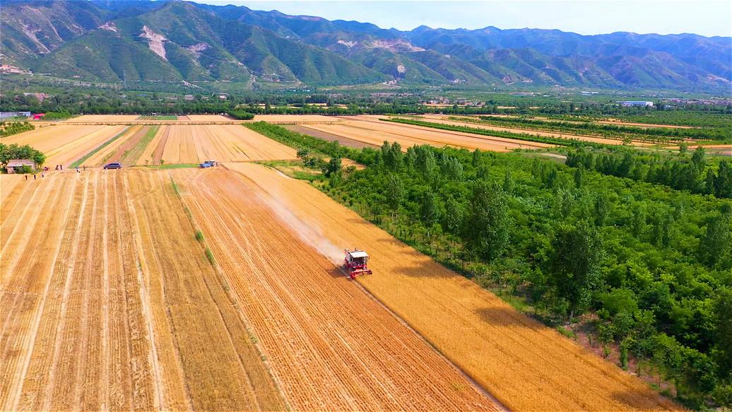 中國農民豐收節選擇在運城舉辦,是對中華優秀傳統文化、對農耕文明的傳承和弘揚。