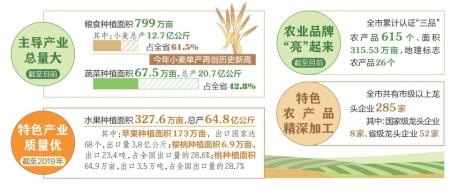 運城打造現代農業發展新標桿