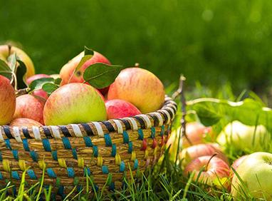 山西:百家企業開展農特産品産供銷對接