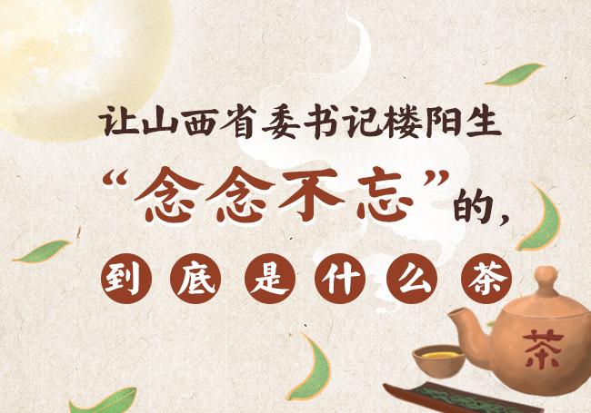 """讓山西省委書記樓陽生""""念念不忘""""的,到底是什麼茶"""