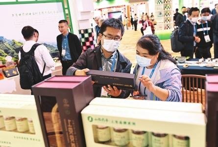 品味山西藥茶 推動産業發展