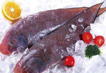 太原設進口冷凍肉品和水産品集中監管總倉