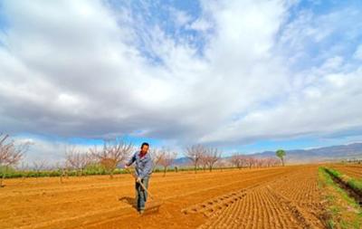 山西省通報6起亂佔耕地建房典型案例