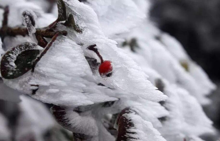 本周山西氣溫較低 雨雪大風相繼出現