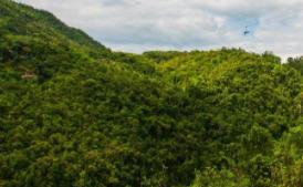 山西公布第一批20個省級林業和草原長期科研基地