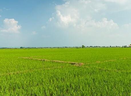 山西農資集團11萬余噸肥料力保春耕生産