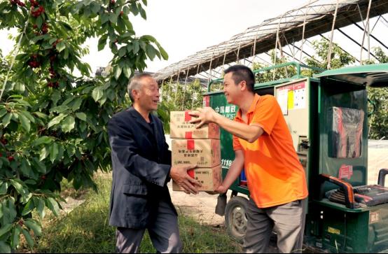 山西郵政多樣化惠農舉措助力絳縣櫻桃銷售